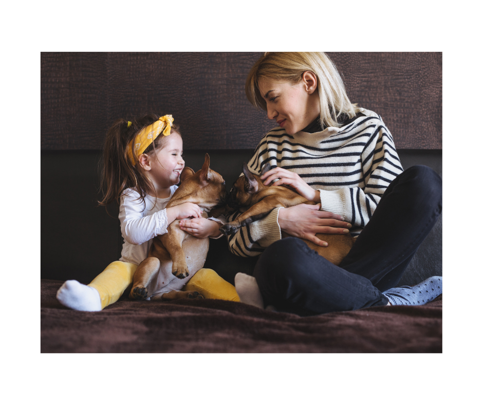 french bulldog together with kids and family